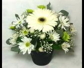 A Touch Of Thoughtfullness in Weyburn, Saskatchewan, Brady's House Of Flowers