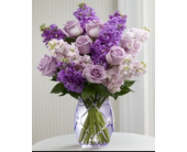 Plum Crazy for You in Aston PA, Wise Originals Florists & Gifts