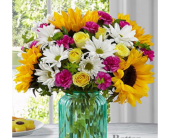 Ray of Sunshine in Aston PA, Wise Originals Florists & Gifts
