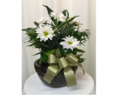 SMALL CERAMIC DISH GARDEN WITH FRESH in Titusville FL, Floral Creations By Dawn