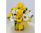 You Are My Sunshine in Raleigh NC, Gingerbread House Florist - Raleigh NC