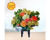 Summer Citrus in Dallas TX, In Bloom Flowers, Gifts and More