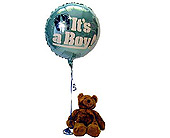 It's A Boy Bear and Balloon in Bound Brook NJ, America's Florist & Gifts
