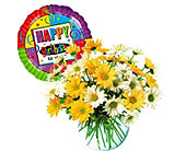Dashing Daisies with Balloon in Bound Brook NJ, America's Florist & Gifts