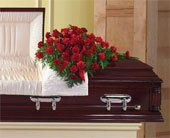 Carnation Casket Cover in Bound Brook NJ, America's Florist & Gifts
