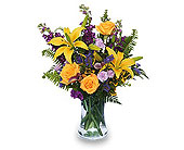 Stellar Yellow in Bound Brook NJ, America's Florist & Gifts