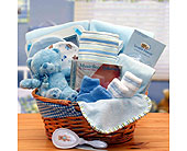 USA - Baby Basics - Blue in Bound Brook NJ, America's Florist & Gifts
