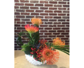 Cherry Hill Flowers - Urchin Orange - Moorestown Flower Shoppe