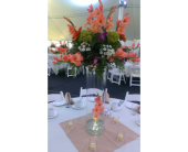 reception in Vineland NJ, Anton's Florist