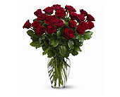 Two Dozen Red Roses<br><font color=red>Special</fo in Walnut Creek&nbsp;CA, Countrywood Florist