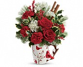 Send a Hug Wings Of  Winter by Teleflora in Wolfeboro NH, Linda's Flowers & Plants