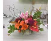 GFG62 in Buffalo Grove IL, Blooming Grove Flowers & Gifts