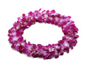 Hawaiian Lei in Betterton MD, Alluring Flowers