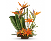 Exotic Garden in Largo FL, Rose Garden Flowers & Gifts, Inc