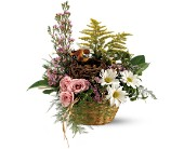 Teleflora's Nesting Basket, picture