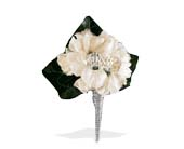 White Stock Boutonniere in St. Louis MO, Walter Knoll Florist