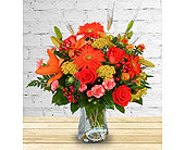 Amber Waves - Deluxe in Dallas TX, In Bloom Flowers, Gifts and More