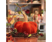 HOT SKWASH PUMPKINS  in Bellevue WA, CITY FLOWERS, INC.