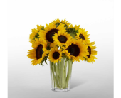 The FTD® Golden Sunflower