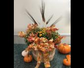 Mum Pot in State College, Pennsylvania, Woodrings Floral Gardens