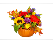 Fresh Pumpkin  in Methuen MA, Martins Flowers & Gifts