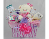 Baby Girl Welcome Basket in Houston TX, Ace Flowers