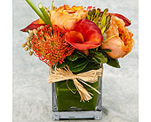 Fall Mix in Great Neck NY, United Floral
