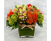 Fall Cluster in Great Neck NY, United Floral