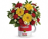 Campbell's Healthy Wishes by Teleflora in Watertown NY, Sherwood Florist