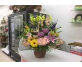 BGF3219 in Buffalo Grove IL, Blooming Grove Flowers & Gifts