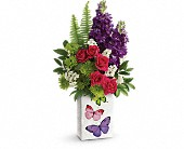 Teleflora's Flight Of Fancy Bouquet in Charlotte NC, Starclaire House Of Flowers Florist