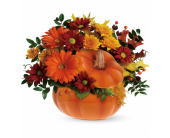 Country Pumpkin in Palm Springs CA, Palm Springs Florist, Inc.