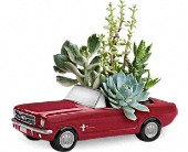 Dream Wheels '65 Ford Mustang by Teleflora in Burlingame CA, Burlingame LaGuna Florist