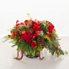 Queens Flowers - Red December - Starbright Floral Design