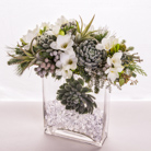 Queens Flowers - Baby It's Cold Outside  - Starbright Floral Design