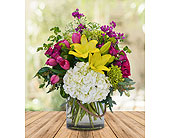 Celebrate in Dallas TX, In Bloom Flowers, Gifts and More