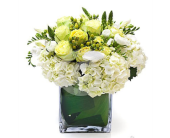 Spring Garden Box in Bellevue WA, CITY FLOWERS, INC.