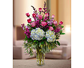 You're The Best in Dallas TX, In Bloom Flowers, Gifts and More