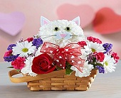 Flirty Feline� in San Antonio TX, Pretty Petals Floral Boutique