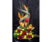 Tropical Beauty in Westfield IN, Union Street Flowers & Gifts