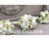 w7 in London ON, Posno Flowers