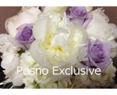 w16 in London ON, Posno Flowers