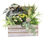 Worthing Chest Garden in Detroit and St. Clair Shores, Michigan, Conner Park Florist
