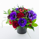 Anemone Charm in New York NY, Starbright Floral Design