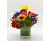 Colors of love in Blue Bell PA, Blooms & Buds Flowers & Gifts