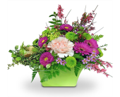 Spring Fever by Nature Nook® in Cleves OH, Nature Nook Florist & Wine Shop
