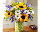 Indianapolis Flowers - Sunflower Sweetness - George Thomas, Inc.