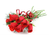 Dozen Wrapped Rose Special in Nashville TN, Emma's Flowers & Gifts, Inc.