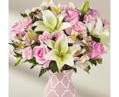 Brighten Your Day in Ammon ID, Petal Passion