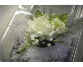 Boutonniere2 in Valley City OH, Hill Haven Farm & Greenhouse & Florist